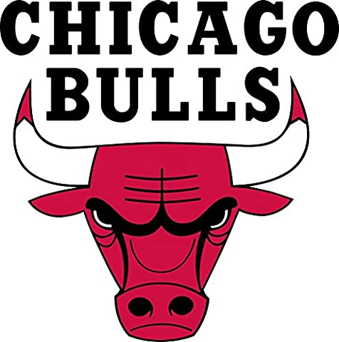Chicago Bulls Customized 14x14 inch Silk Print Poster/WallPaper Great Gift