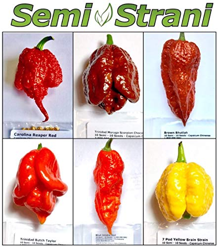 60 Graines De Les 6 Piment Chili Plus Piquant Du Monde, Collection 6: Carolina Reaper, Moruga, Etc