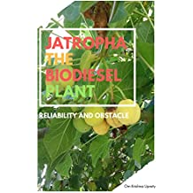 Jatropha The Biodiesel Plant: Reliability and Obstacle (English Edition)