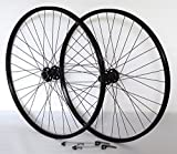 29 Zoll Fahrrad Laufradsatz Pro Disc Hohlkammerfelge schwarz Shimano Deore XT756 schwarz Niro schwarz