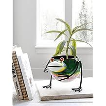Jardinera decorativa del metal para la decoración del jardín casero con diseño de la rana