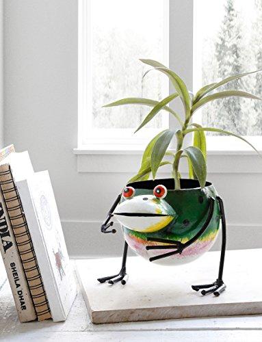 ive Metall Pflanzer fur Hausgarten Dekor mit Frog Design (Senioren-halloween-spiele)