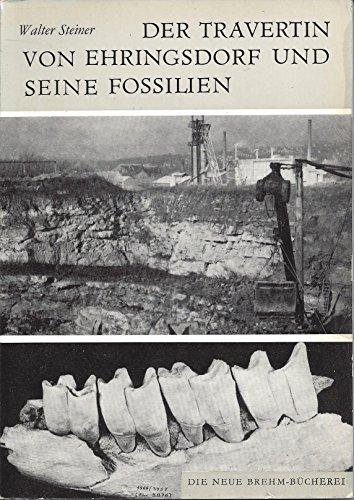 Der Travertin von Ehringsdorf und seine Fossilien.