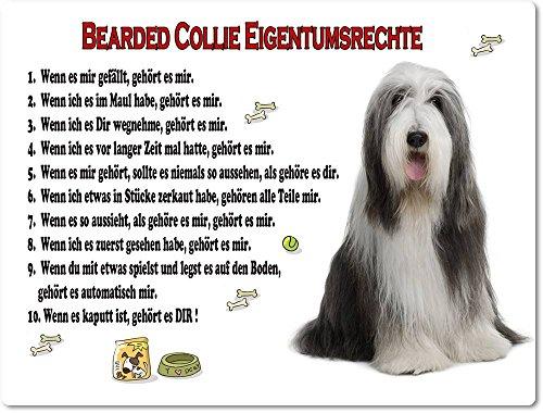 Merchandise for Fans Blechschild/Warnschild / Türschild - Aluminium - 15x20cm Eigentumsrechte Motiv: Bearded Collie (01)