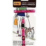 Dingo Halsband und Leine Set mit Klebeband für Hunde York