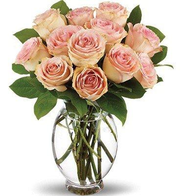 bouquet-di-18-rose-naturali-fresche-in-a-domicilio-fiori-rosa