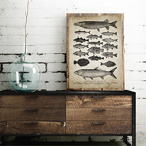 Danjiao Vintage Rassen Von Fischen Drucken Angeln Süßwasserfische Illustration Poster Retro Wandkunst Bild Leinwand Malerei Dekor Wohnzimmer 60x90cm