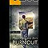 Mein Weg aus dem Burnout: Der Stress-Falle entkommen, Lebenskunst entwickeln