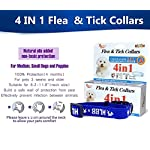 pet dogs and cats flea &tick collar with natural botanical essence for controlling remedy repelling flea egg, mosquito,lice with high-efficiency for large/medium/small dogs and cats (small dog) Pet Dogs and Cats Flea &Tick Collar with Natural Botanical Essence for Controlling Remedy Repelling Flea Egg, Mosquito,lice with High-efficiency for Large/Medium/Small Dogs and Cats (Small Dog) 51 dvUPBGwL