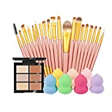 Rcool 1PC 6-Color Concealer + 20PC Cosmetic Makeup Brush + 1PC Water Face Powder Puff (G)