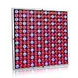 Exmate 45W 225 LED wachsen helle Pflanzen-wachsende Lampen-Platte mit den roten u. Blauen Reflektor-Birnen für Innengewächshaus-Zelt-Sukkulenten-Sämlings-Blühender Gemüseblüte-Hydroponischer