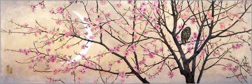 Forex-Platte 60 x 20 cm: Primavera von Charles Caryl Coleman / ARTOTHEK