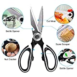 from Olivivi Heavy Duty Kitchen Shears - Olivivi Kitchen Scissors, Multi-Purpose Utility Scissor with Cover for Poultry, Fish, Meat, Vegetables, Herbs, Nut, Wine Bottle Cap, 100 Food Grade Stainless Steel