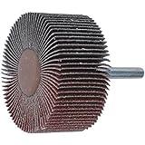 Leman 9931580 Roue à lamelle en Corindon sur tige de ø 6 mm 30 x 15 mm Grain 80