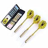 3x Dartpfeile mit Kunststoffspitze & Transportbox - Gewicht a. 18kg / Gewindetype 2BA - ideal für E-Dart bzw. elektronische Dartscheiben