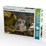 """""""Die Abenteuer des Robin Hood""""                    von Howard Pyle 1000 Teile Puzzle hoch (CALVENDO Spass)"""