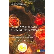 Weihnachtsbaum und Blütenwunder: Geheimnisse, Herkunft und Gebrauch traditioneller Weihnachtspflanzen