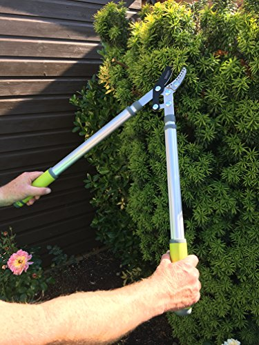 Pro Telescopic Anvil Loppers – Less Effort Sharp Easy Cut – Lightweight Aluminium – Quick Click Extendable 630mm to 950mm Garden Pruner – Best on Pruning Tree Branches Hedges Too Thick for Secateurs – Quality Gardening Tool