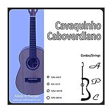 APC instruments CORCAV CV Strings