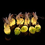 LEDMOMO Uovo coniglietto luce notturna a LED, 10 LED, a batteria uovo e ghirlande di luci decorative (bianco caldo)