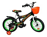 Hollicy Fury 16 Plastic Bicycle, Kids 16-inch (Green/Black)