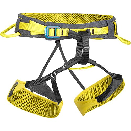 SALEWA-Rock-Pure-Harness-Arns