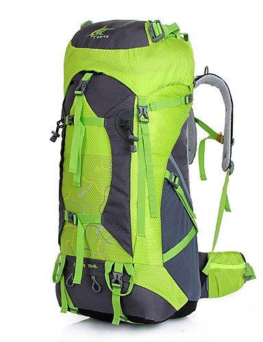 ZQ n/a L Rucksack Legere Sport / Reisen / Laufen Draußen / Leistung Wasserdicht / Multifunktions andere Nylon N/A light green