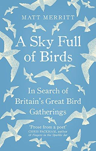 a-sky-full-of-birds-nicole-graves-mysteries