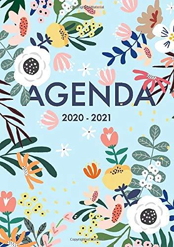 Agenda 2020 2021 Giornaliera 18 Mesi: Agenda 2020 2021 italiano A5, un giorno per pagina,  luglio 2020 - dicembre 2021, motivo floreale, blu