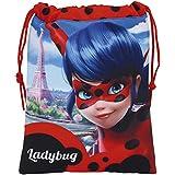 Lady Bug - Saquito para merienda, 20 x 25 cm (Safta 811702237)