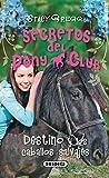 Destino y los caballos salvajes (Secretos Del Pony Club, Band 3)