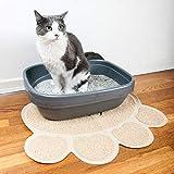 Tapis hygiénique pour litière de chat (ensemble de 2), tapis antidérapants et imperméables pour animaux de compagnie lorsqu'ils quittent la litière, faciles à nettoyer et durables, grands
