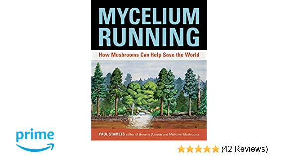 Mycelium Running: A Guide to Healing the Planet Through