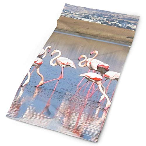 Headbands Pink Flamingo Bird Headband Unisex Headwrap Magic Head Scarf Bandana Headwear Neck Scarf Quick Dry Balaclava Cool Headdress Scrunchy Cool Skin Balaclava