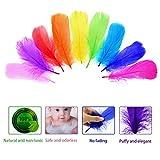 LANTECK 300 stücke 10 farbe Decor Federn, Bunte Naturfedern Federn 8-15 cm für DIY Handwerk Hochzeit Home Party Dekorationen
