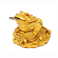mkki Feng Shui Money Lucky Fortune Wealth Chinese Frog Toad Coin Home Office Decoration Table Ornaments Good Lucky Gifts