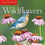 Audubon Wildflowers 2017 Calendar