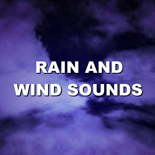 Splendid Morning Rainy Recording