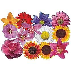 PEGATINA adhesiva, diseño floral: Flower Set 08-Mini - 36 piezas