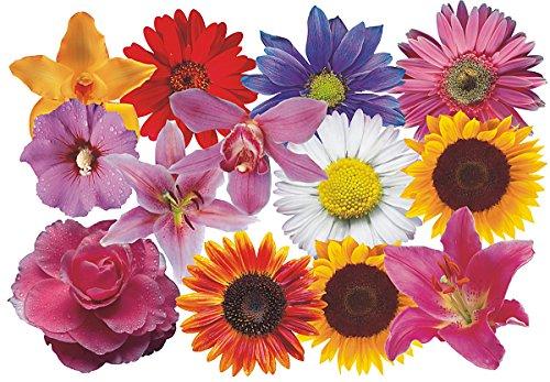 Autoaufkleber, Blumendesign: Flower Set 08-Mini-36 Stück