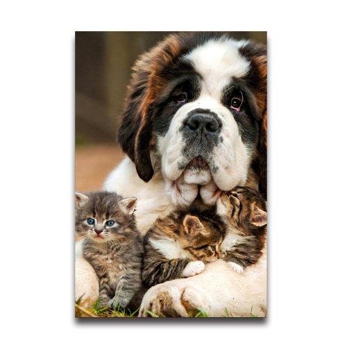 NewPostersWorld Super Niedlicher ST Bernard Hund mit Kätzchen Individuelle Dekorative Creative Art Poster Home Moderne Dekoration Print Decor für Wohnzimmer Custom Poster 30,5x 40,6cm