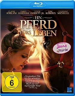 Ein Pferd fürs Leben [Blu-ray]
