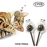 Chenqi Cat Catnip Lollipop Golosinas Naturales Juguetes - Mint Ball Stick Dental Mastica Dientes Limpieza Cuidado Oral Saludable Anti Mal Aliento Juego Interactivo, 2 PCS