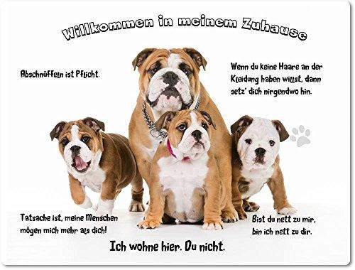 Merchandise for Fans Blechschild/Warnschild/Türschild - Aluminium - 30x40cm - - Willkommen in Meinem Zuhause - Motiv: Englische Bulldogge Familie - 05