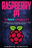 Raspberry Pi: The Blueprint to Raspberry Pi (Cyberpunk Blueprint Series)
