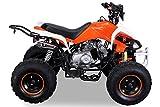Kinder Quad 125 ccm orange/weiß Speedy - 6