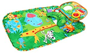 Fisher Price Rainforest Playmate