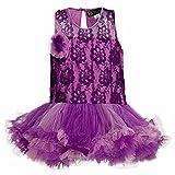 Lil Poppets Girls' Lace Tutu Dress T Bac...