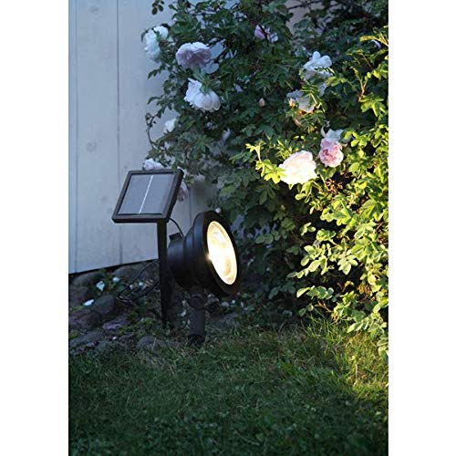 KAMACA LED SOLAR Spotlight effektvolle Beleuchtung hohe Leuchtkraft 30 Lumen helle Ausleuchtung schwarz SOLARPANEL inklusive Erdspieß (LED Solar Spotlight 30 Lumen)