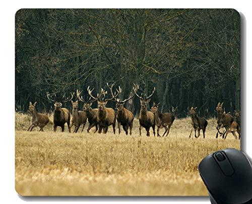 Gaming Mouse Pad Design, Animal Running Deer - Genähte Kanten